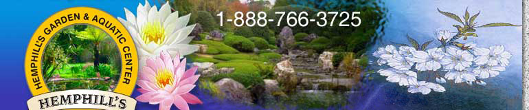 Garden Supplies, Pond Supplies and Nursery - Hemphills Garden and Aquatic Center, Fallston Maryland