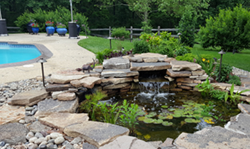 Pond and Pool Landscaping Services